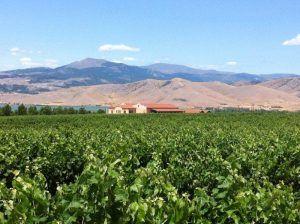 wine tour greece macedonia