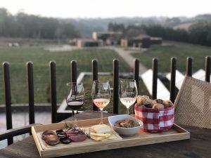 luxury wine tour portugal porto douro coast