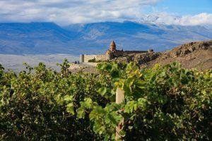 wine tour armenia georgia abbey
