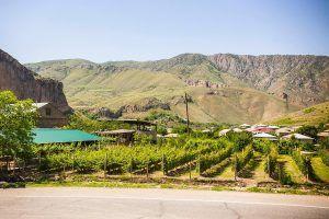 wine tour armenia georgia