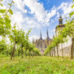 11-day relaxing wine tour to the Czech Republic and Slovakia